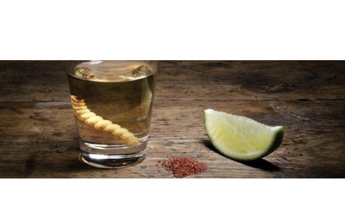 El Mezcal gana al Tequila
